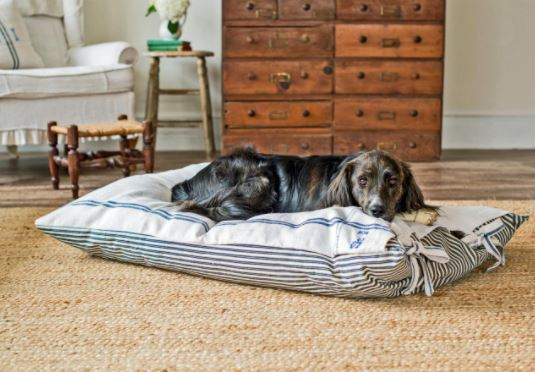 old pillows can be used to make dog beds