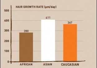 growth rate of hair among African women, Asians and Caucasians