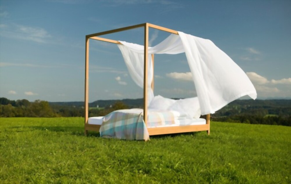 canopy beds do not need box springs